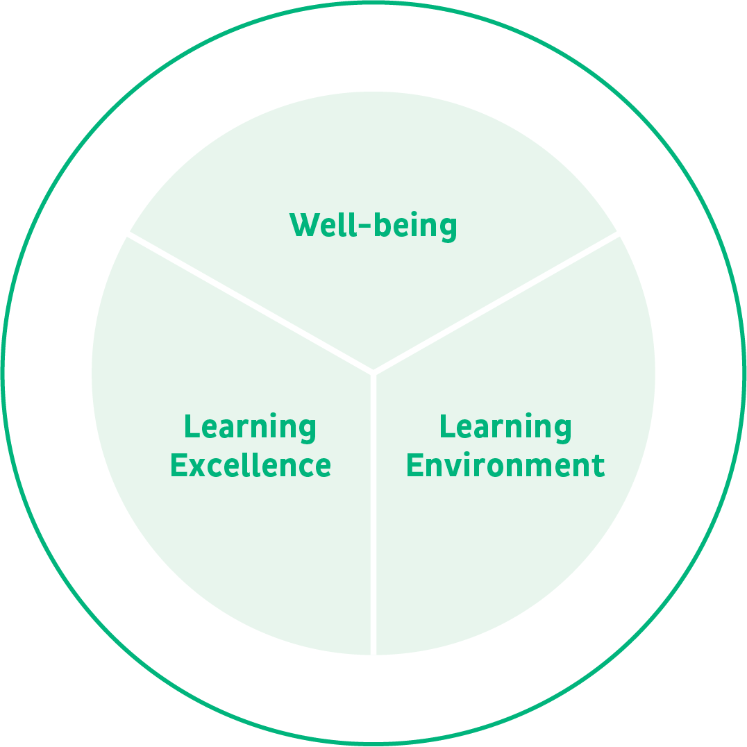 Pupil Wellbeing and Learning Review – Wheel
